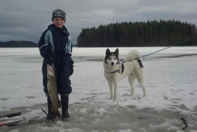 Pesca de invierno. Queremos enseñar a los niños tradiciones antiguas y la manera de conseguir armonía con la naturaleza.