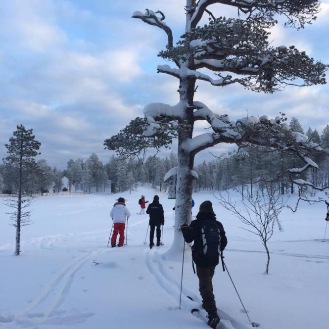 saariselkä hiihtokuva ryhmä
