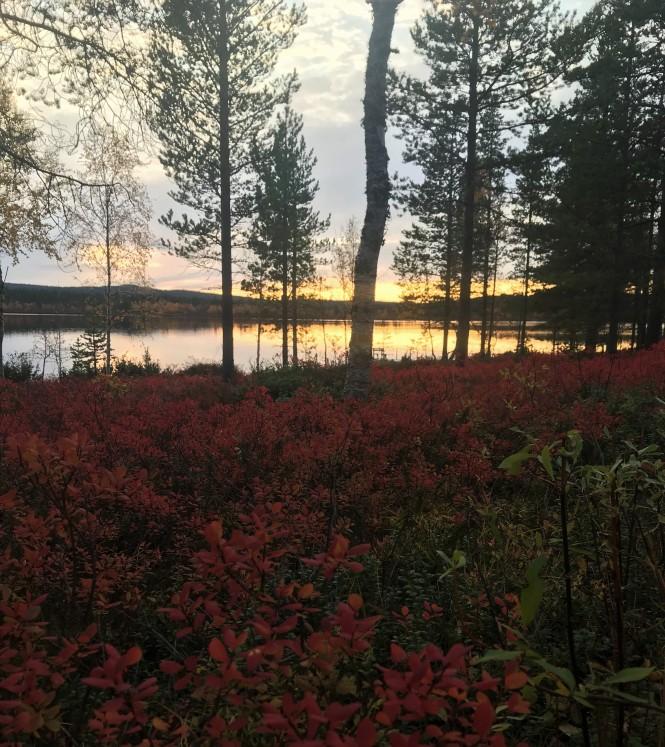 Korpikartano_maaruska_menesjärvi